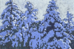 Winter-Pines-11-x-14.5-Pastel